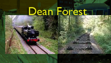 deanforest